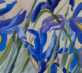 jane-smith-irises-crop-u5742
